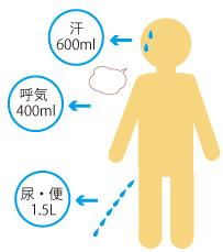 1日に排出する水分量