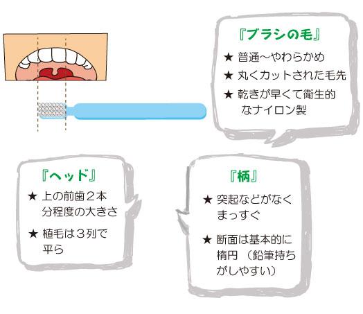 歯ブラシを選ぶポイント