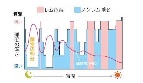 睡眠の時間経過と深さの変動グラフ