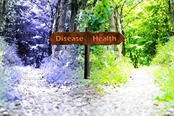 健康と病気のわかれ道