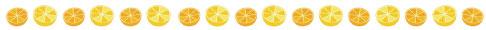 柑橘類の区切り絵