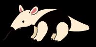卵を産む哺乳類(単孔目)と貧歯目(ひんしもく)