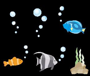 魚たちの楽園